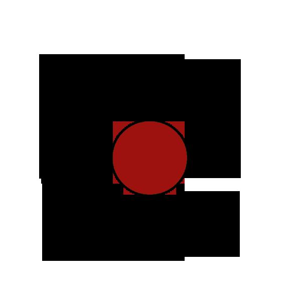 logo75x80